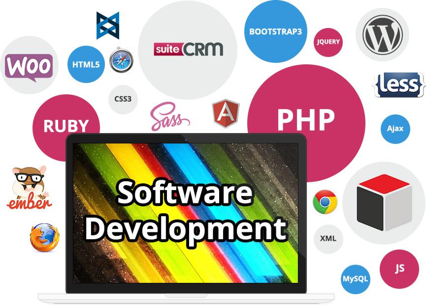 Reasons for choosing custom design software development services
