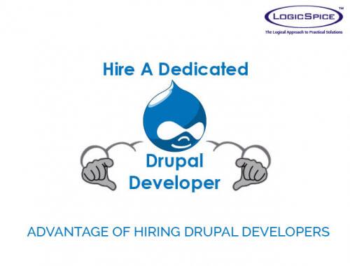Advantage of Hiring Drupal Developers