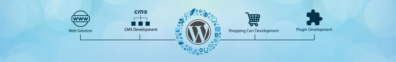 Custom wordpress website development service