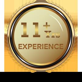 11+ Experince - Logicspice