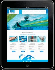 website development & designing services